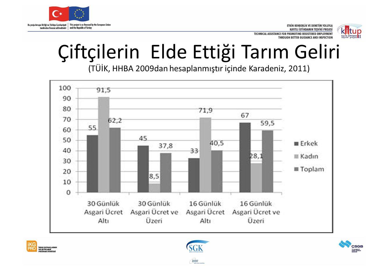 Çiftçilerin Elde Ettiği Tarım Geliri (TÜİK, HHBA 2009dan hesaplanmıştır içinde Karadeniz, 2011)