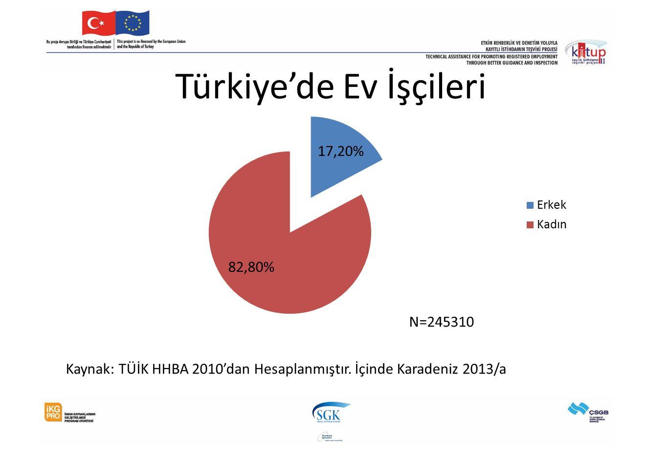 Türkiye'de Ev İşçileri N=245310 Kaynak: TÜİK HHBA 2010'dan Hesaplanmıştır. İçinde Karadeniz 2013/a