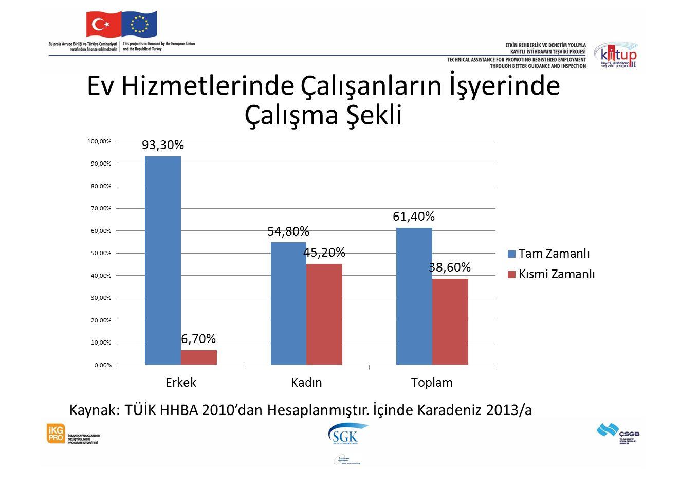 Ev Hizmetlerinde Çalışanların İşyerinde Çalışma Şekli Kaynak: TÜİK HHBA 2010'dan Hesaplanmıştır. İçinde Karadeniz 2013/a