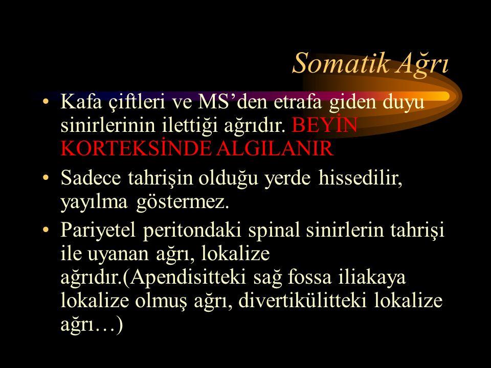 Somatik Ağrı Kafa çiftleri ve MS'den etrafa giden duyu sinirlerinin ilettiği ağrıdır.