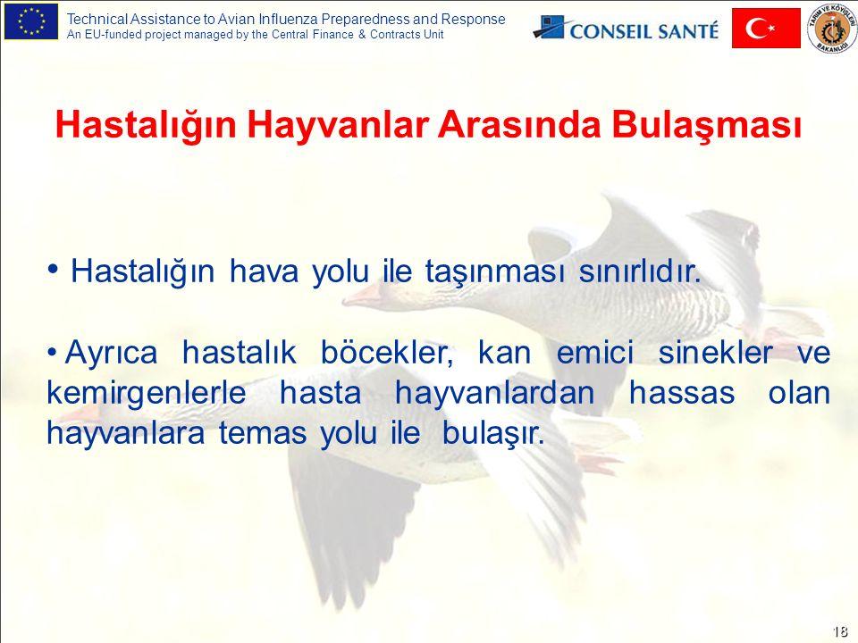 Technical Assistance to Avian Influenza Preparedness and Response An EU-funded project managed by the Central Finance & Contracts Unit 18 Hastalığın Hayvanlar Arasında Bulaşması Hastalığın hava yolu ile taşınması sınırlıdır.