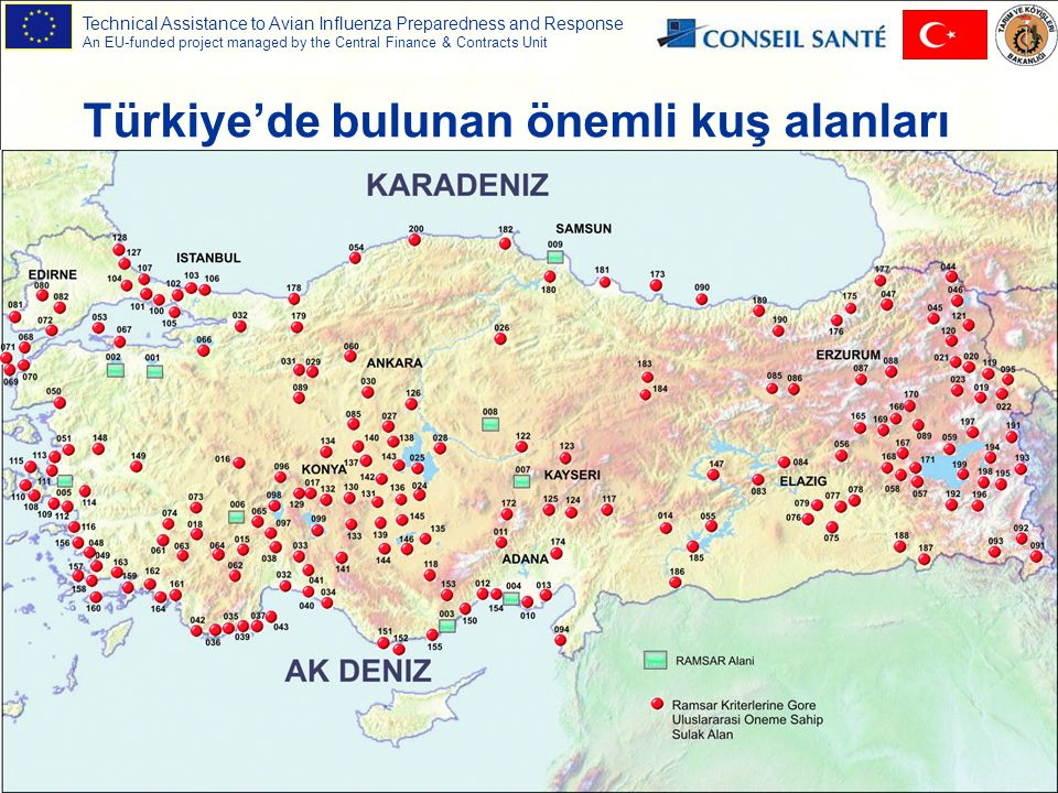 Technical Assistance to Avian Influenza Preparedness and Response An EU-funded project managed by the Central Finance & Contracts Unit 54 Türkiye'de bulunan önemli kuş alanları