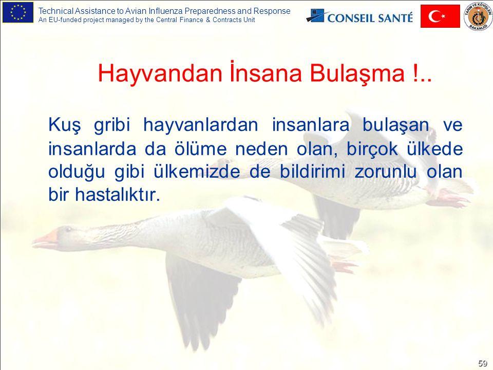 Technical Assistance to Avian Influenza Preparedness and Response An EU-funded project managed by the Central Finance & Contracts Unit 59 Kuş gribi hayvanlardan insanlara bulaşan ve insanlarda da ölüme neden olan, birçok ülkede olduğu gibi ülkemizde de bildirimi zorunlu olan bir hastalıktır.