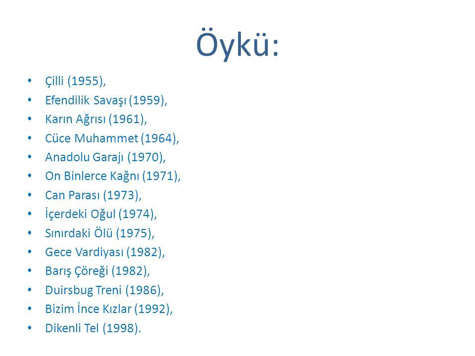 Öykü: Çilli (1955), Efendilik Savaşı (1959), Karın Ağrısı (1961), Cüce Muhammet (1964), Anadolu Garajı (1970), On Binlerce Kağnı (1971), Can Parası (1973), İçerdeki Oğul (1974), Sınırdaki Ölü (1975), Gece Vardiyası (1982), Barış Çöreği (1982), Duirsbug Treni (1986), Bizim İnce Kızlar (1992), Dikenli Tel (1998).