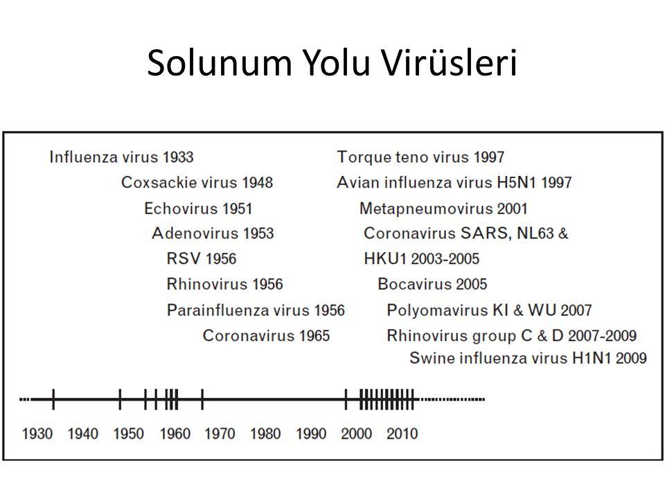 Solunum Yolu Virüsleri