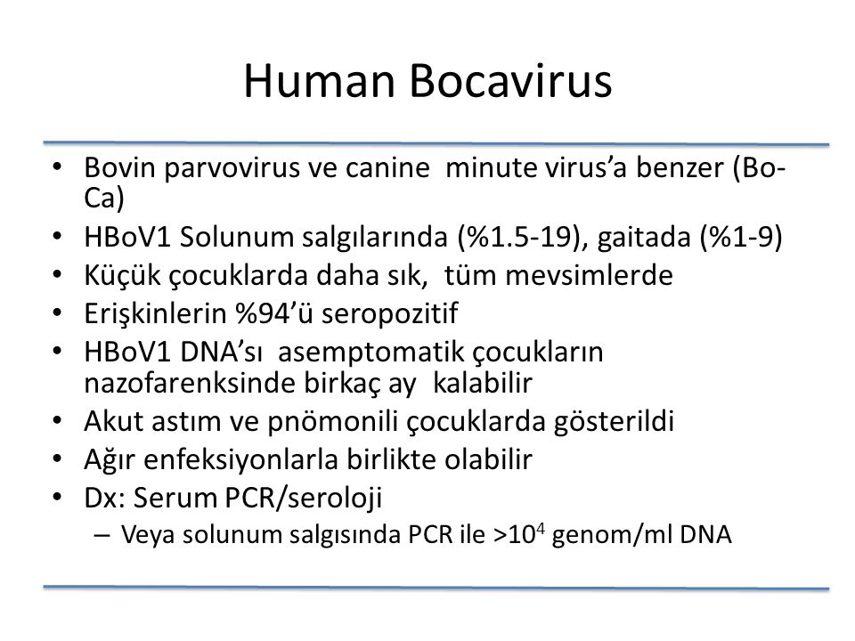 Human Bocavirus Bovin parvovirus ve canine minute virus'a benzer (Bo- Ca) HBoV1 Solunum salgılarında (%1.5-19), gaitada (%1-9) Küçük çocuklarda daha sık, tüm mevsimlerde Erişkinlerin %94'ü seropozitif HBoV1 DNA'sı asemptomatik çocukların nazofarenksinde birkaç ay kalabilir Akut astım ve pnömonili çocuklarda gösterildi Ağır enfeksiyonlarla birlikte olabilir Dx: Serum PCR/seroloji – Veya solunum salgısında PCR ile >10 4 genom/ml DNA
