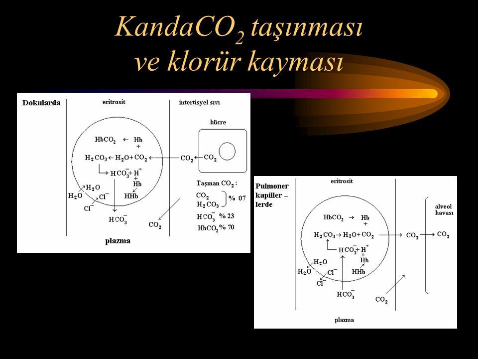 KandaCO 2 taşınması ve klorür kayması