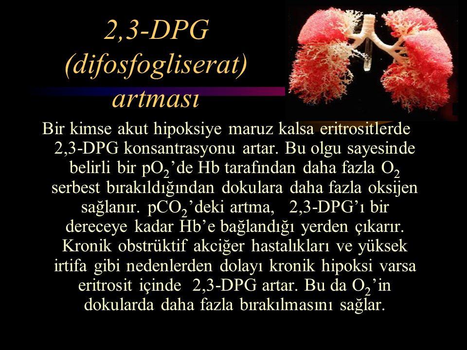 2,3-DPG (difosfogliserat) artması Bir kimse akut hipoksiye maruz kalsa eritrositlerde 2,3-DPG konsantrasyonu artar. Bu olgu sayesinde belirli bir pO 2