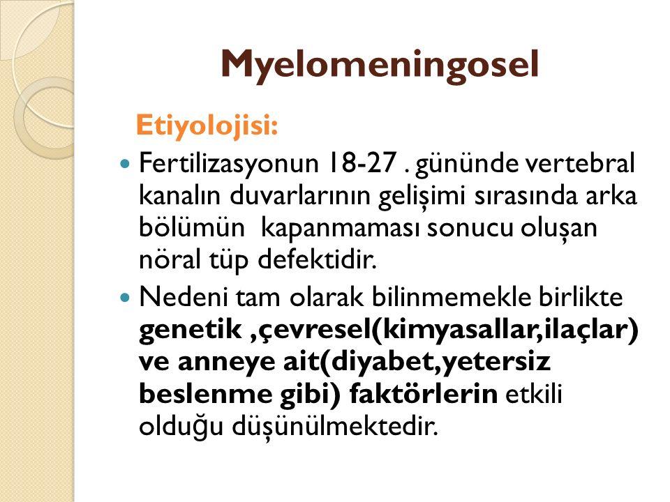 Myelomeningosel Etiyolojisi: Fertilizasyonun 18-27.
