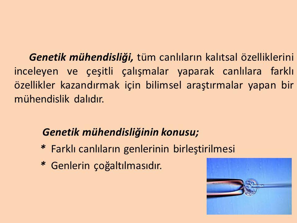 Genetik mühendisliği, tüm canlıların kalıtsal özelliklerini inceleyen ve çeşitli çalışmalar yaparak canlılara farklı özellikler kazandırmak için bilimsel araştırmalar yapan bir mühendislik dalıdır.
