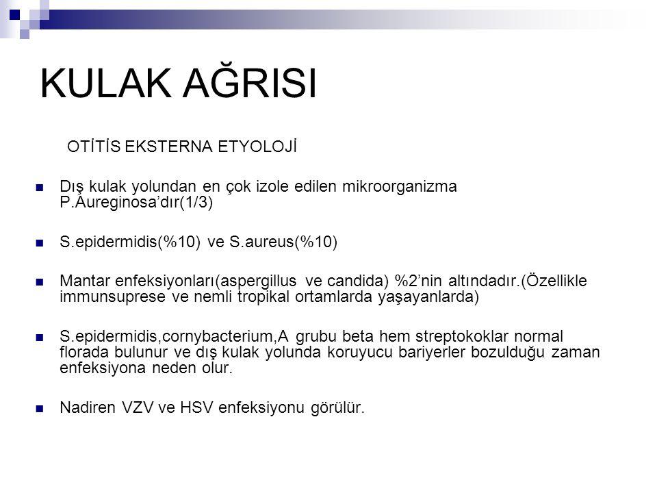KULAK AĞRISI OTİTİS EKSTERNA ETYOLOJİ Dış kulak yolundan en çok izole edilen mikroorganizma P.Aureginosa'dır(1/3) S.epidermidis(%10) ve S.aureus(%10)