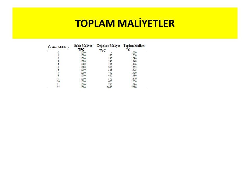 TOPLAM MALİYETLER