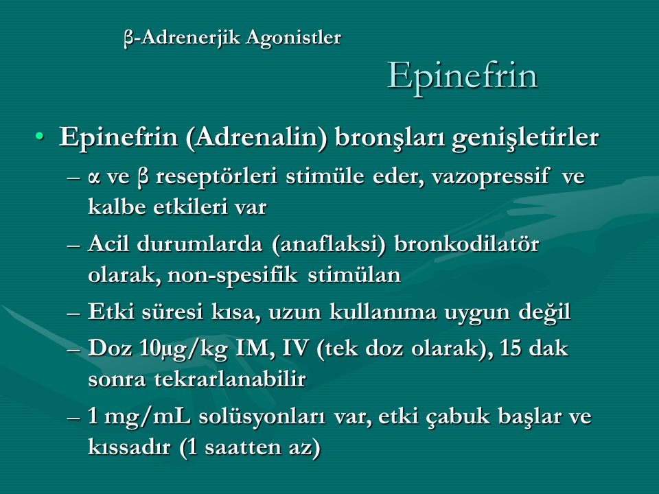 β-Adrenerjik Agonistler Epinefrin Epinefrin (Adrenalin) bronşları genişletirlerEpinefrin (Adrenalin) bronşları genişletirler –α ve β reseptörleri stimüle eder, vazopressif ve kalbe etkileri var –Acil durumlarda (anaflaksi) bronkodilatör olarak, non-spesifik stimülan –Etki süresi kısa, uzun kullanıma uygun değil –Doz 10µg/kg IM, IV (tek doz olarak), 15 dak sonra tekrarlanabilir –1 mg/mL solüsyonları var, etki çabuk başlar ve kıssadır (1 saatten az)