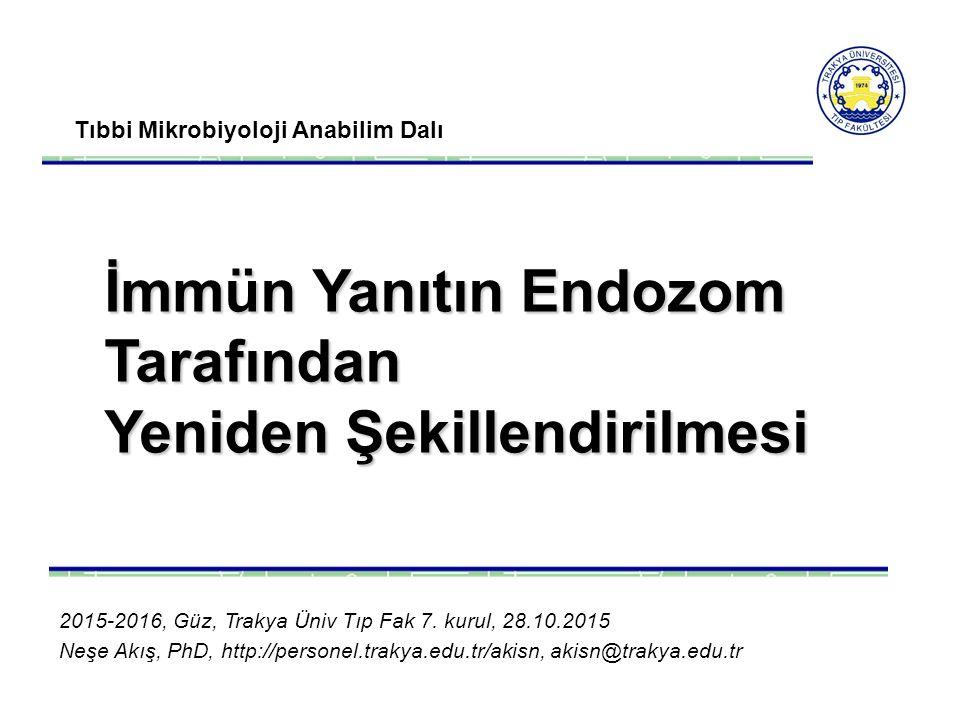 Tıbbi Mikrobiyoloji Anabilim Dalı İmmün Yanıtın Endozom Tarafından Yeniden Şekillendirilmesi 2015-2016, Güz, Trakya Üniv Tıp Fak 7.
