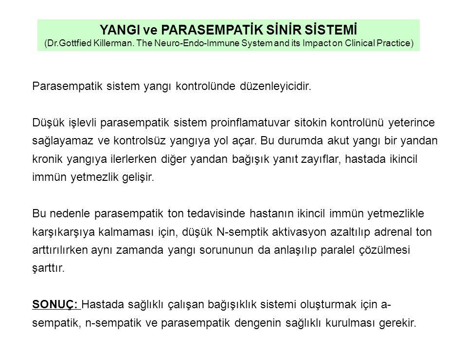 Parasempatik sistem yangı kontrolünde düzenleyicidir.