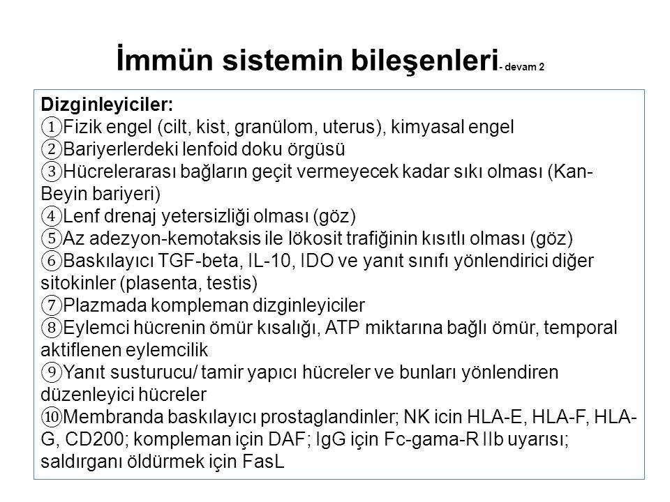 Dizginleyiciler: ① Fizik engel (cilt, kist, granülom, uterus), kimyasal engel ② Bariyerlerdeki lenfoid doku örgüsü ③ Hücrelerarası bağların geçit vermeyecek kadar sıkı olması (Kan- Beyin bariyeri) ④ Lenf drenaj yetersizliği olması (göz) ⑤ Az adezyon-kemotaksis ile lökosit trafiğinin kısıtlı olması (göz) ⑥ Baskılayıcı TGF-beta, IL-10, IDO ve yanıt sınıfı yönlendirici diğer sitokinler (plasenta, testis) ⑦ Plazmada kompleman dizginleyiciler ⑧ Eylemci hücrenin ömür kısalığı, ATP miktarına bağlı ömür, temporal aktiflenen eylemcilik ⑨ Yanıt susturucu/ tamir yapıcı hücreler ve bunları yönlendiren düzenleyici hücreler ⑩ Membranda baskılayıcı prostaglandinler; NK icin HLA-E, HLA-F, HLA- G, CD200; kompleman için DAF; IgG için Fc-gama-R IIb uyarısı; saldırganı öldürmek için FasL İmmün sistemin bileşenleri - devam 2