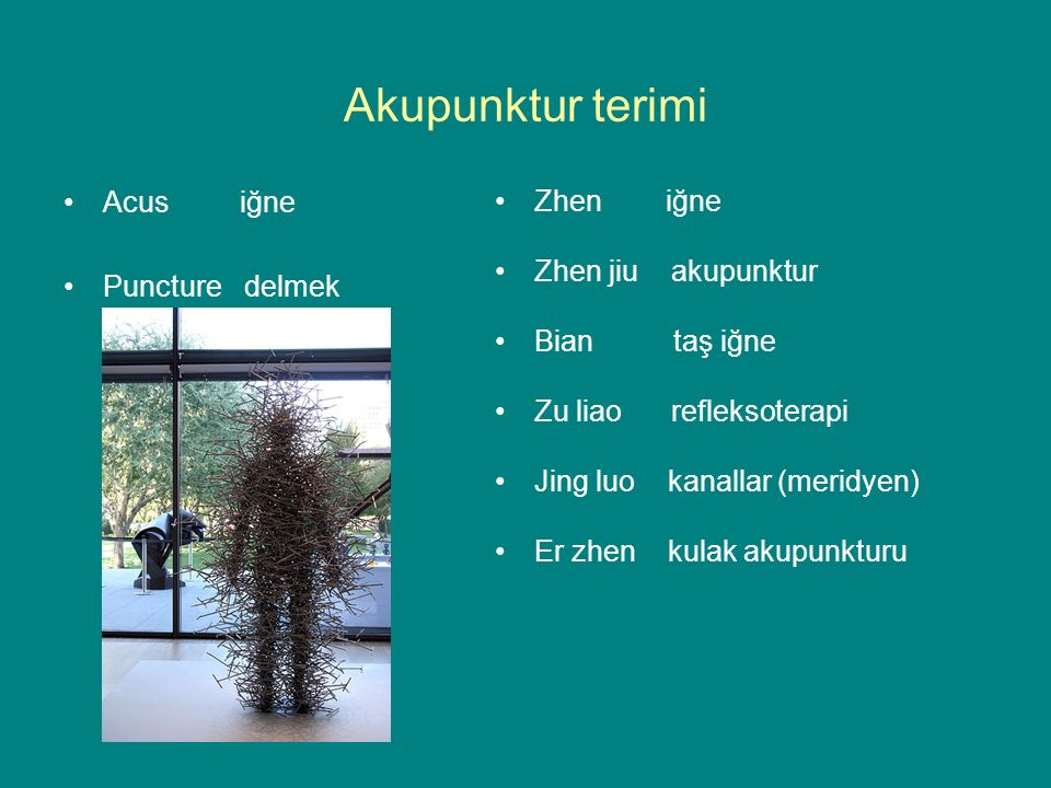 Akupunktur terimi Acus iğne Puncture delmek Zhen iğne Zhen jiu akupunktur Bian taş iğne Zu liao refleksoterapi Jing luo kanallar (meridyen) Er zhen kulak akupunkturu