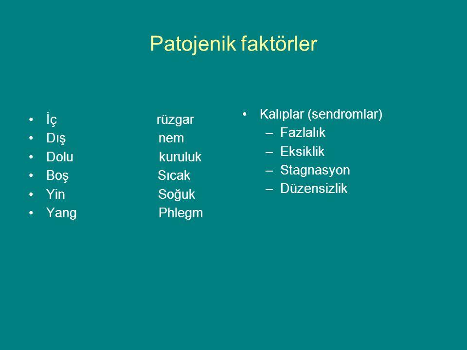 İç rüzgar Dış nem Dolu kuruluk Boş Sıcak Yin Soğuk Yang Phlegm Kalıplar (sendromlar) –Fazlalık –Eksiklik –Stagnasyon –Düzensizlik Patojenik faktörler