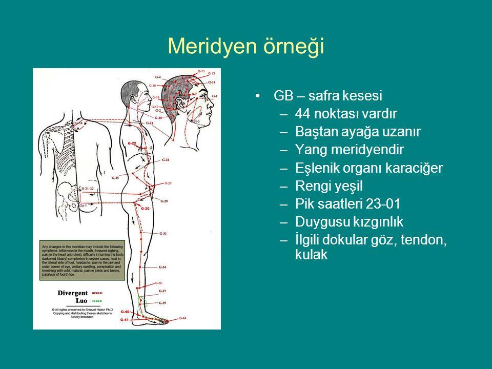 Meridyen örneği GB – safra kesesi –44 noktası vardır –Baştan ayağa uzanır –Yang meridyendir –Eşlenik organı karaciğer –Rengi yeşil –Pik saatleri 23-01 –Duygusu kızgınlık –İlgili dokular göz, tendon, kulak