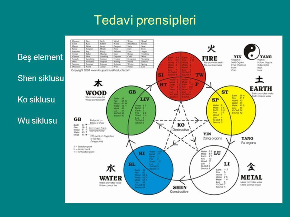 Tedavi prensipleri Beş element Shen siklusu Ko siklusu Wu siklusu