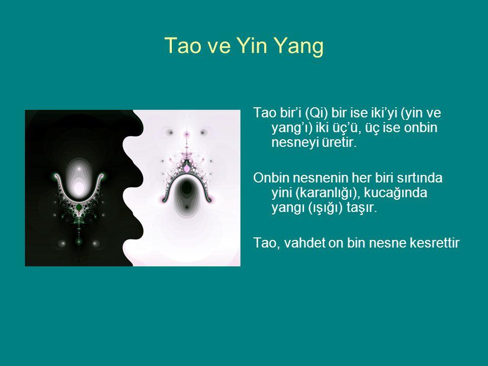 Tao ve Yin Yang Tao bir'i (Qi) bir ise iki'yi (yin ve yang'ı) iki üç'ü, üç ise onbin nesneyi üretir. Onbin nesnenin her biri sırtında yini (karanlığı)
