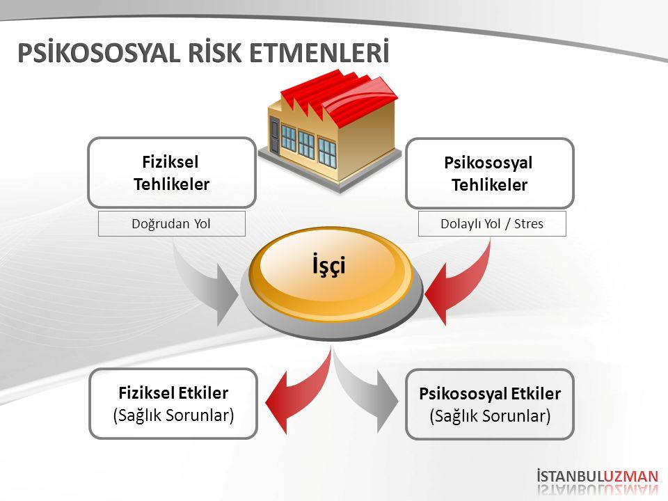 Fiziksel Tehlikeler Psikososyal Tehlikeler Fiziksel Etkiler (Sağlık Sorunlar) Psikososyal Etkiler (Sağlık Sorunlar) İşçi Doğrudan YolDolaylı Yol / Stres
