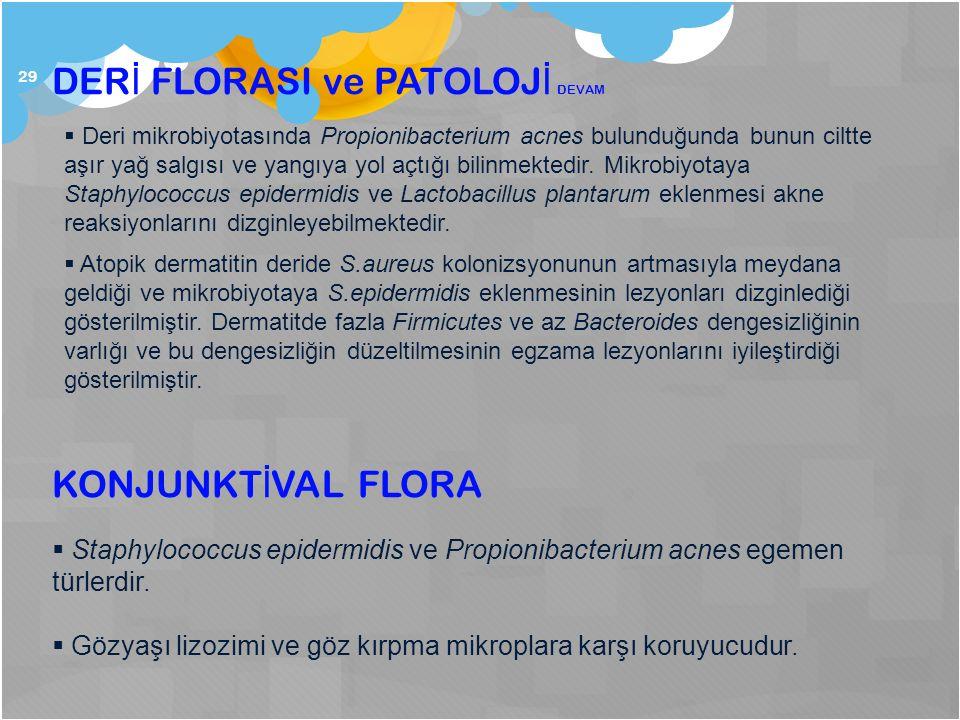29 KONJUNKT İ VAL FLORA  Staphylococcus epidermidis ve Propionibacterium acnes egemen türlerdir.  Gözyaşı lizozimi ve göz kırpma mikroplara karşı ko