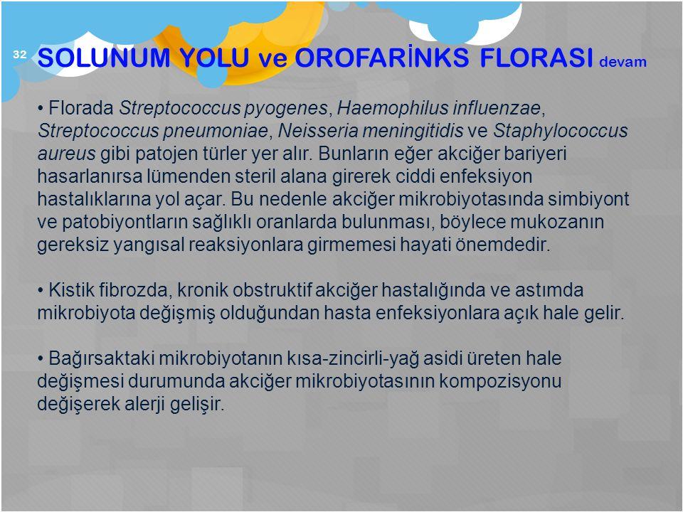 32 SOLUNUM YOLU ve OROFAR İ NKS FLORASI devam Florada Streptococcus pyogenes, Haemophilus influenzae, Streptococcus pneumoniae, Neisseria meningitidis ve Staphylococcus aureus gibi patojen türler yer alır.