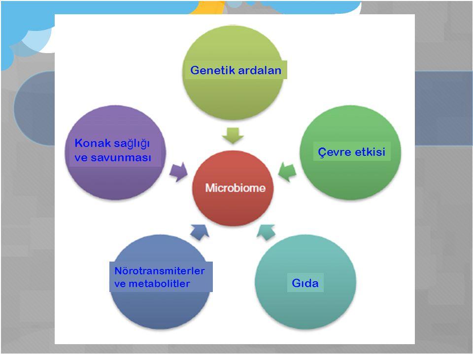 Çevre etkisi Genetik ardalan Konak sa ğ lı ğ ı ve savunması Nörotransmiterler ve metabolitler Gıda