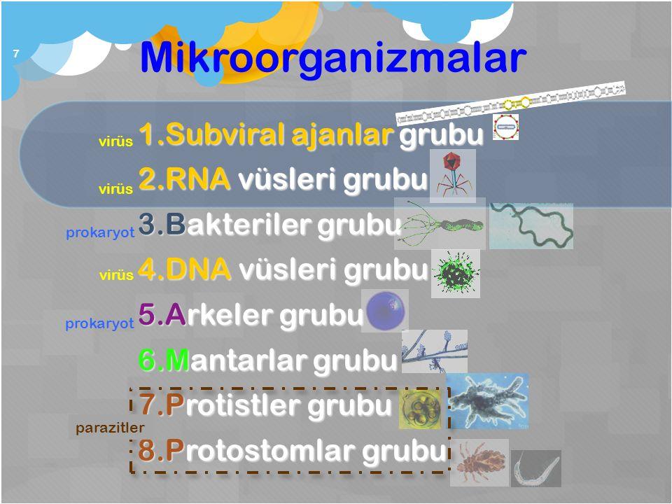 Mikroorganizmalar 7 1.Subviral ajanlar grubu 2.RNA vüsleri grubu 3.Bakteriler grubu 4.DNA vüsleri grubu 5.Arkeler grubu 6.Mantarlar grubu 7.Protistler grubu 8.Protostomlar grubu parazitler virüs prokaryot virüs