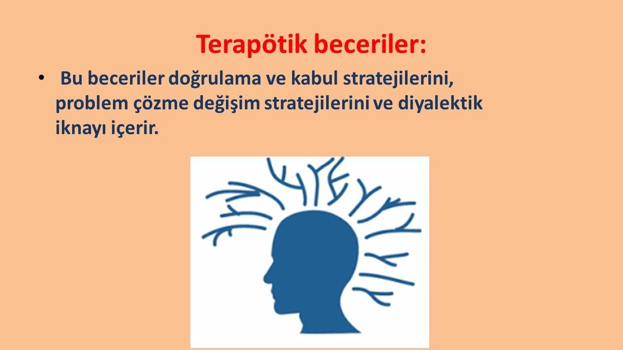 Terapötik beceriler: Bu beceriler doğrulama ve kabul stratejilerini, problem çözme değişim stratejilerini ve diyalektik iknayı içerir.