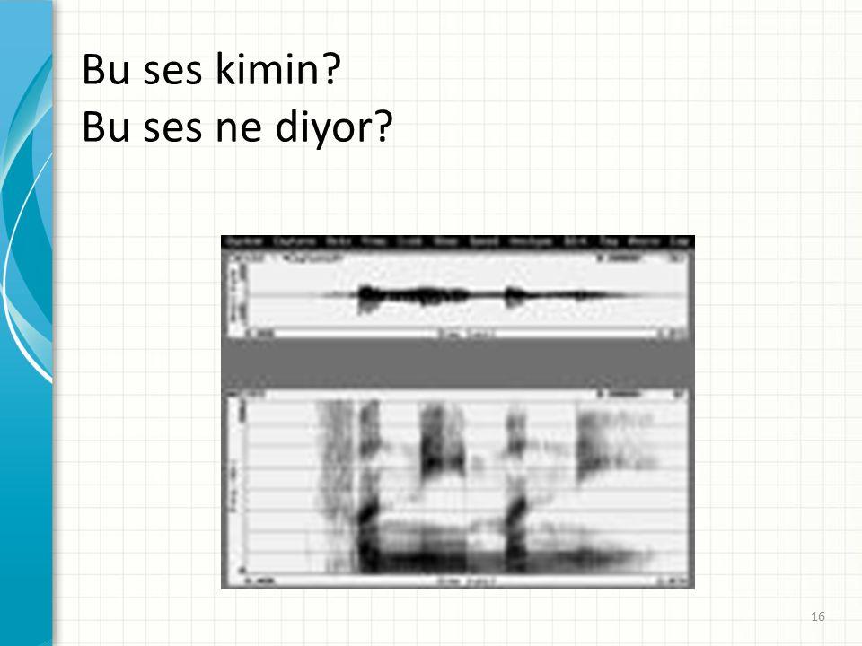 Bu ses kimin? Bu ses ne diyor? 16