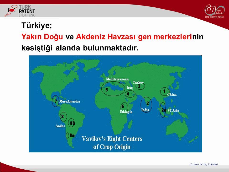 Türkiye; Yakın Doğu ve Akdeniz Havzası gen merkezlerinin kesiştiği alanda bulunmaktadır. Suzan Kılıç Daldal
