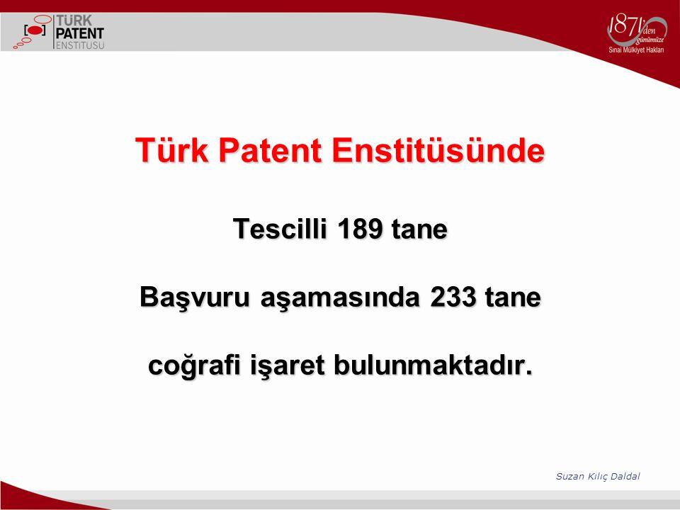 Türk Patent Enstitüsünde Tescilli 189 tane Başvuru aşamasında 233 tane coğrafi işaret bulunmaktadır. Türk Patent Enstitüsünde Tescilli 189 tane Başvur
