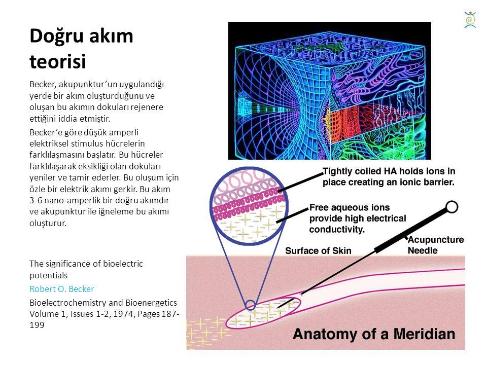Doğru akım teorisi Becker, akupunktur'un uygulandığı yerde bir akım oluşturduğunu ve oluşan bu akımın dokuları rejenere ettiğini iddia etmiştir.