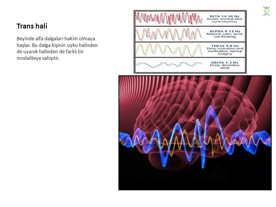 Trans hali Beyinde alfa dalgaları hakim olmaya başlar.