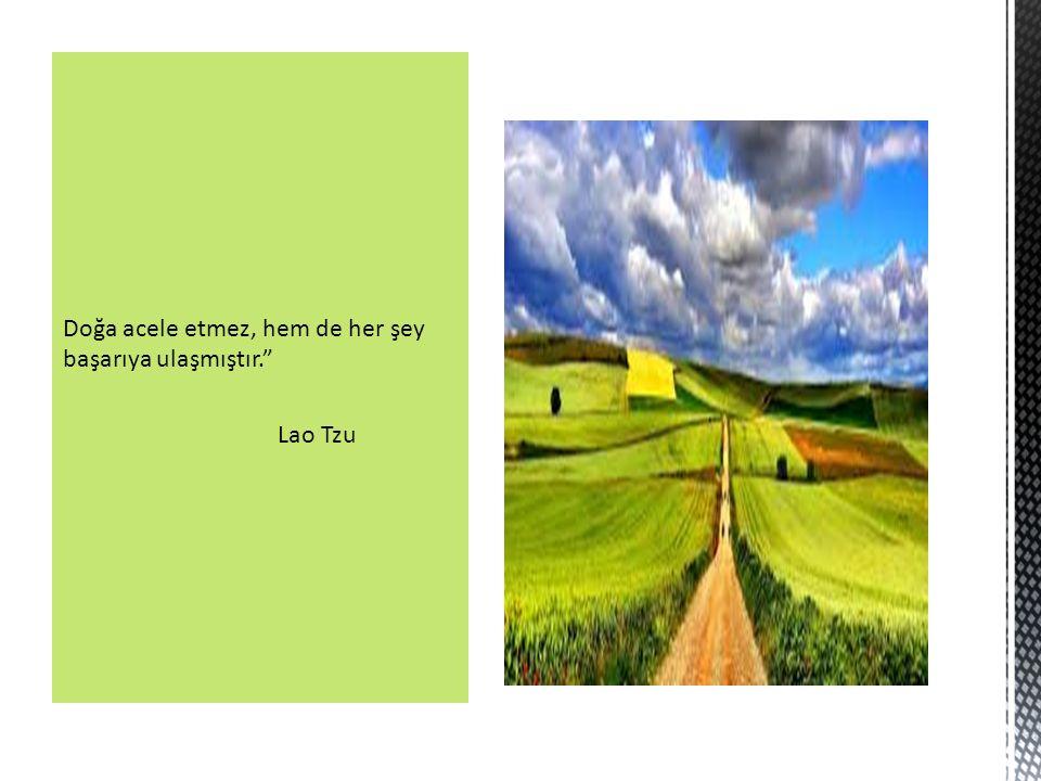Doğa acele etmez, hem de her şey başarıya ulaşmıştır. Lao Tzu