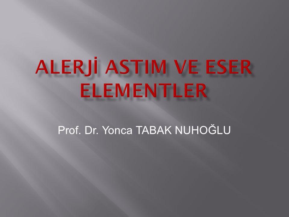 Prof. Dr. Yonca TABAK NUHOĞLU