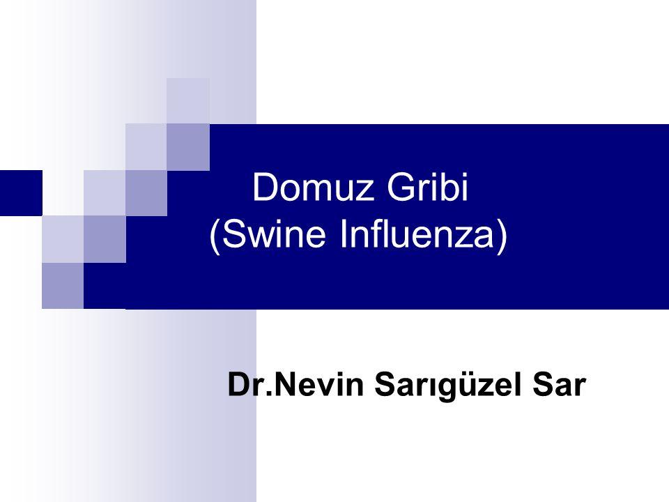 Domuz Gribi (Swine Influenza) Dr.Nevin Sarıgüzel Sar