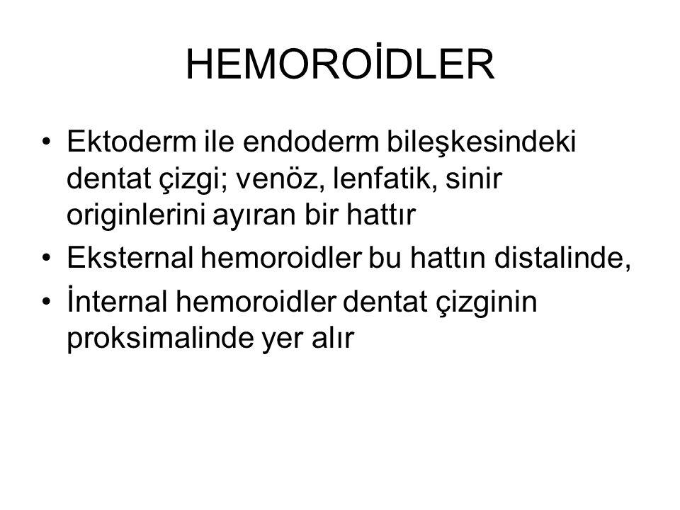 HEMOROİDLER Ektoderm ile endoderm bileşkesindeki dentat çizgi; venöz, lenfatik, sinir originlerini ayıran bir hattır Eksternal hemoroidler bu hattın d