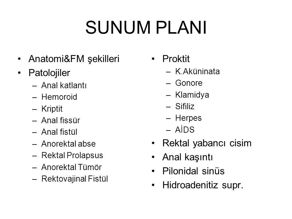 SUNUM PLANI Anatomi&FM şekilleri Patolojiler –Anal katlantı –Hemoroid –Kriptit –Anal fissür –Anal fistül –Anorektal abse –Rektal Prolapsus –Anorektal