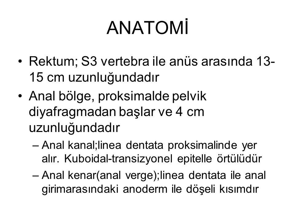 ANATOMİ Rektum; S3 vertebra ile anüs arasında 13- 15 cm uzunluğundadır Anal bölge, proksimalde pelvik diyafragmadan başlar ve 4 cm uzunluğundadır –Ana