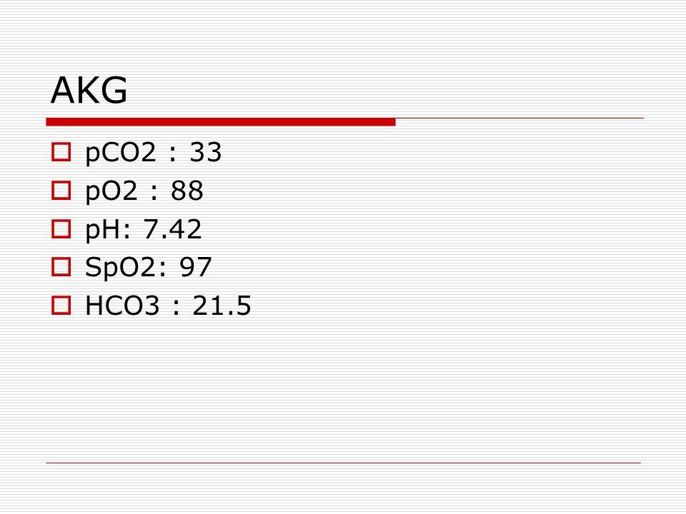 AKG  pCO2 : 33  pO2 : 88  pH: 7.42  SpO2: 97  HCO3 : 21.5