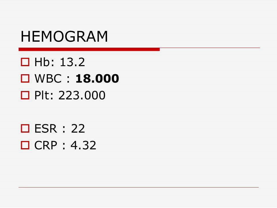 HEMOGRAM  Hb: 13.2  WBC : 18.000  Plt: 223.000  ESR : 22  CRP : 4.32