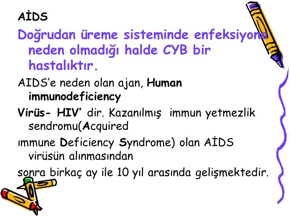 AİDS Doğrudan üreme sisteminde enfeksiyona neden olmadığı halde CYB bir hastalıktır. AIDS'e neden olan ajan, Human immunodeficiency Virüs- HIV' dir. K
