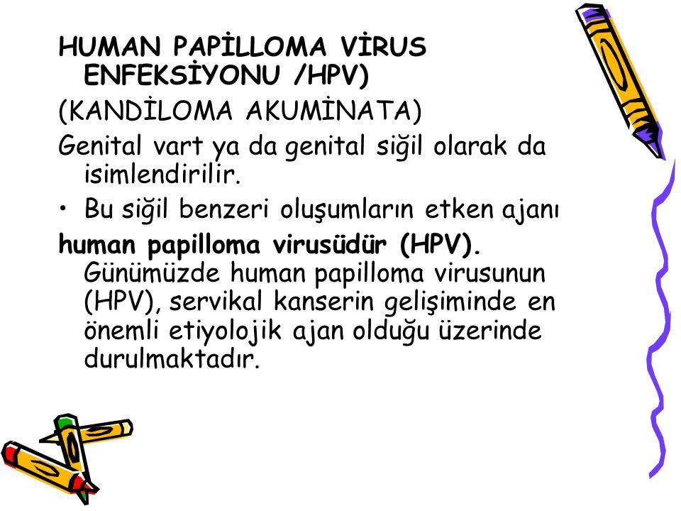 HUMAN PAPİLLOMA VİRUS ENFEKSİYONU /HPV) (KANDİLOMA AKUMİNATA) Genital vart ya da genital siğil olarak da isimlendirilir. Bu siğil benzeri oluşumların