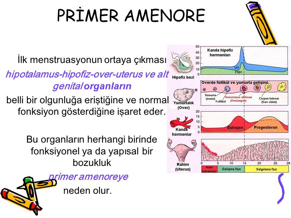 PRİMER AMENORE İlk menstruasyonun ortaya çıkması hipotalamus-hipofiz-over-uterus ve alt genital organların belli bir olgunluğa eriştiğine ve normal fo