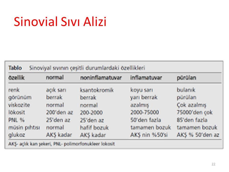 Sinovial Sıvı Alizi 22