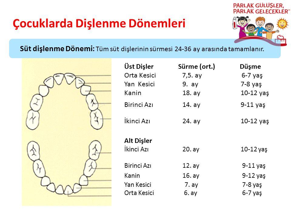 Çocuklarda Dişlenme Dönemleri Parlak Gülüşler Parlak Gelecekeler Üst Dişler Sürme (ort.) Düşme Orta Kesici 7,5. ay 6-7 yaş Yan Kesici9. ay7-8 yaş Kani