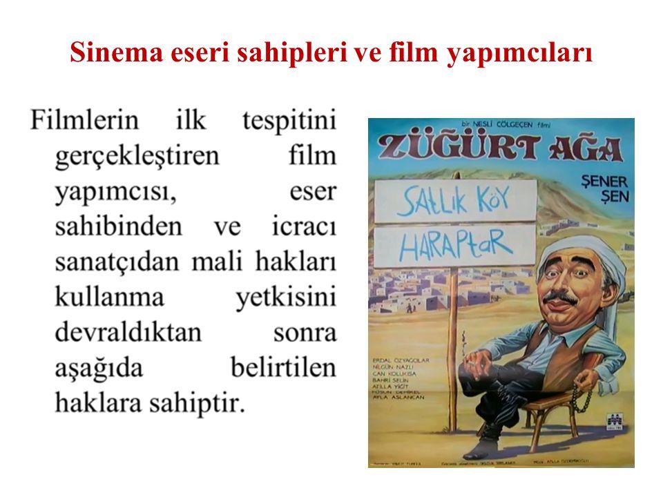 Sinema eseri sahipleri ve film yapımcıları 28